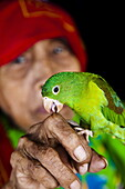 Kuna woman with pet parrot in the San Blas Islands, Panama, Central America