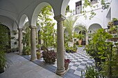 Courtyard, Arcos de la Frontera, one of the white villages, Andalucia, Spain, Europe