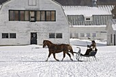 A woman taking a horse and sleigh ride in South Woodstock, Vermont, New England, United States of America, North America