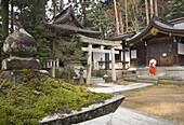 Courtyard with temple buildings and female priest wearing traditional red trousers on the stairs, Sakurayama Nikko Kan temple, Takayama, Hida District, Honshu, Japan, Asia