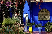 The Majorelle Garden, created by the French cabinetmaker Louis Majorelle, and restored by the couturier Yves Saint-Laurent, Marrakesh, Morocco, North Africa, Africa