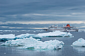 Ice floes and expedition cruise ship MS Hanseatic (Hapag-Lloyd Cruises), Brown Bluff, Weddell Sea, Antarctic Peninsula, Antarctica