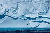Detail of giant iceberg, near Shag Rocks, South Atlantic Ocean between Falkland Islands and South Georgia Island, Antarctica