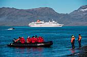 Zodiac dinghy landing for passengers of expedition cruise ship MS Hanseatic (Hapag-Lloyd Cruises), Grytviken, South Georgia Island, Antarctica