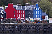 Brightly coloured houses at the fishing port of Tobermory, Isle of Mull, Inner Hebrides, Scotland, United Kingdom, Europe