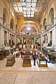 Interior of the Main Hall, The Museum of Egyptian Antiquities (Egyptian Museum), Cairo, Egypt, North Africa, Africa