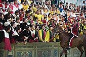 Rider and supporters at El Palio horse race festival, Piazza del Campo, Siena, Tuscany, Italy, Europe