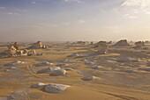 Wind-eroded sculptures of calcium rich rock in The White Desert near Bahariya, Egypt, North Africa, Africa