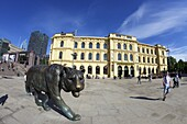 Bronze tiger in summer sunshine, Christian Frederiks Plass, Oslo city centre, Norway, Scandinavia, Europe