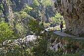 Walking the Cares Gorge footpath, Picos de Europa, Castilla y Leon, Spain, Europe