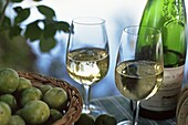 Glasses of white wine on table with river relected in glass, Loire, France, Europe
