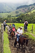 Horse riding in Cocora Valley, Salento, Colombia, South America