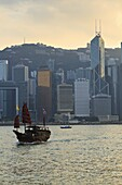 Chinese sailing junk on Victoria Harbour, the skyline of Central, Hong Kong Island beyond, Hong Kong, China, Asia