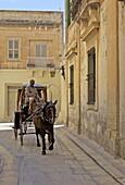 Mdina, the fortress city, Malta, Europe
