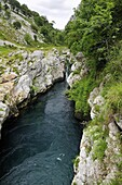 Rio Cares carving through karst limestone valley in the Picos de Europa mountains, near Panes, Asturias, Spain, Europe