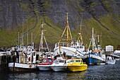 Fishing vessels, Port of Isafjordur, West Fjords Region, Iceland, Polar Regions