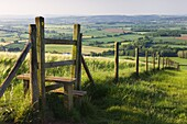 Footpath and style leading over fence through fields,  Raddon Hill,  Devon,  England,  United Kingdom,  Europe