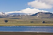 Mountain landscape with body of water and flock of birds,  Snaefellsjokull National Park,  Iceland,  Polar Regions