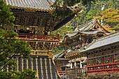 Yomei-mon (Gate of Sunlight), Tosho-gu Shrine, Nikko, Central Honshu (Chubu), Japan, Asia
