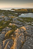 Rocky coasline bathed in early morning light at township of Manish, Isle of Harris, Outer Hebrides, Scotland, United Kingdom, Europe