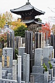 Grave stones and pagoda in a cemetery, Shinnyo do Temple, Kyoto, Japan, Asia