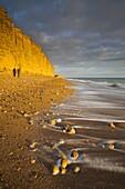 Golden sandstone cliffs at West Bay on the Jurassic Coast, UNESCO World Heritage Site, Dorset, England, United Kingdom, Europe