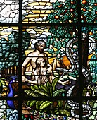 Stained glass of Adam and Eve in the Garden of Eden, Vienna, Austria, Europe