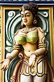 A bas-relief representation of an Indian female on a pillar close to the manuscripts library in Thanjavur (Tanjore), Tamil Nadu, India, Asia