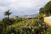 View over the Botanical Garden, Funchal, Madeira, Portugal, Europe
