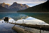 Reflections at Emerald Lake, Yoho National Park, UNESCO World Heritage Site, British Columbia, Rocky Mountains, Canada, North America