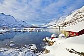 Snow covered mountains, boathouse and moorings in Norwegian fjord village of Ersfjord, Kvaloya island, Troms, Norway, Scandinavia, Europe