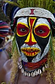 Colourfully dressed and face painted local tribes celebrating the traditional Sing Sing in Enga, Papua New Guinea, Melanesia, Pacific