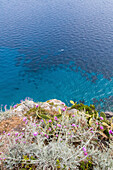 Blau, blaues Wasser, Insel Capri, Aussicht, Bucht, Küste, Berge, Golf von Neapel, Kampanischer Archipel, Mittelmeer, Urlaub, Tourismus, Romantik, malerisch, Insel, Italien