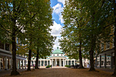 avenue of trees, Brunnenhaus, mineral springs, spa town, Bad Pyrmont, Lower Saxony, Germany