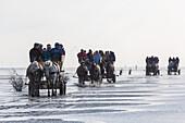 Watt wagon rides to Neuwerk at low tide, tidal flats, mudflats, Cuxhaven, Wadden Sea, Lower Saxony, Germany