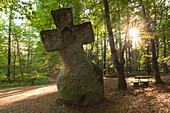 Standing stone, Fraubillenkreuz, nature park Suedeifel, Eifel, Rhineland-Palatinate, Germany
