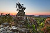 Rock formation Bruchhauser Steine, Rothaarsteig hiking trail, Rothaargebirge, Sauerland region, North Rhine-Westphalia, Germany