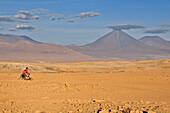 Young man rides a bicycle through desert, volcano Licancabur, Valle de la Luna, Valley of the moon, Atacama desert, National Reserve, Reserva Nacional Los Flamencos, Region de Antofagasta, Andes, Chile, South America