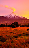 Volcano Villarrica at sunset, snow covered with smoke signalizing soon volcanic outburst and eruption, Strato volcano, sunset, National Park Villarrica, Pucon, Región de la Auracania, Region Los Rios,  Patagonia, Andes, Chile, South America