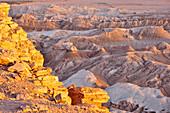 Rocks and mountain ranges, Valle de la Luna, Valley of the moon, Atacama desert, National Reserve, Reserva Nacional Los Flamencos, Region de Antofagasta, Andes, Chile, South America