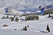 Snow at early winter at Seiser Alm with Santnerspitze und Schlern with Rosszähnen, Seiser Alm, Alpe di Siusi, Sciliar, Nature Park Schlern-Rosengarten, Dolomites, South Tyrol, Alto Adige, UNESCO world heritage side, Italy, European Alps, Europe