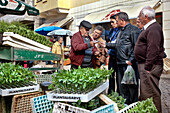 Plant stall, Market in front of the market stall, Silves, Algarve, Portugal