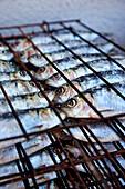 Sardines on a grill rack, Algarve, Portugal