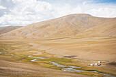 A nomadic grazing camp near Gyama at 5200 meters elevation, inhabited by 'Changpas' (the nomadic migratory shepherds of Tibetan origin who use the land for grazing yaks, sheep, goats, and horses), Ladakh, India.