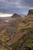 Dramatic landscape of the Quiraing, Trotternish mountains, Isle of Skye, Inner Hebrides, Scotland, United Kingdom, Europe
