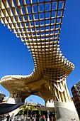 Metropol Parasol, known as Setas de Sevilla (The Mushroom), the world's largest wooden structure, Seville, Andalucia, Spain, Europe