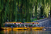 Pleasure boats on the lake in Behai Park, Beijing, China