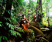 Sarawak men dressed in traditional attire with blowpipes, Sarawak