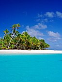 Tropical paradise, Barefoot Island, Aitutaki, Cook Islands
