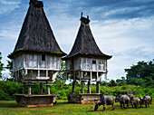 Traditional sacred houses in Lospalmos district, Timor-Leste